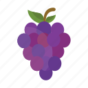 food, fruits, grapes, nature icon