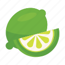 food, fruits, lemon, nature, unriped icon