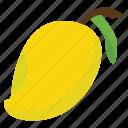 food, fruits, mango, nature icon