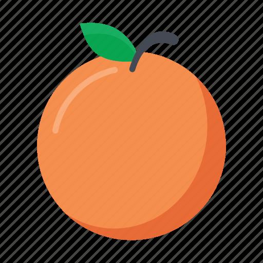 food, fruits, leaf, nature, orange icon