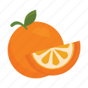 food, fruits, nature, orange icon