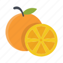 food, fruits, nature, oranges icon