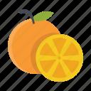food, fruits, nature, oranges icon