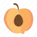 food, fruits, nature, peach icon