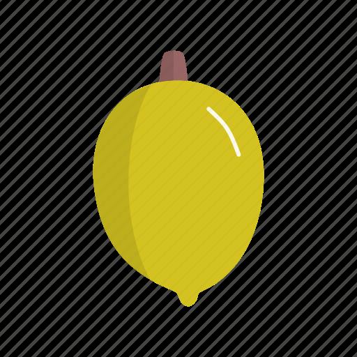 dessert, fruit, fruits, ingridien, lemon icon