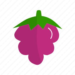 berry, blackberry, dessert, fruit, fruits, ingridien, raspberry icon