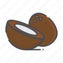 coconut, fresh, fruits icon