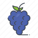 fresh, fruits, grapes icon