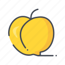 fresh, fruits, peach icon