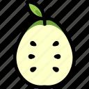 fresh, fruit, guava, half, healthy, organic, tropical icon