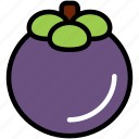 food, fresh, fruit, healthy, mangosteen, organic, tropical icon