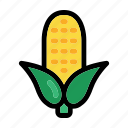 cob, corn, food, organic, vegetable icon