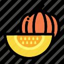 half of pumpkin, healthy food, organic, vegan, vegetarian icon