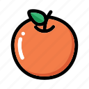 citrus, fresh fruit, fruit, orange, orange fruit icon