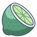 food, fruit, lemon, lime icon