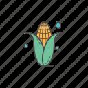 food, corn, fresh fruit, fruit, fresh, healthy food, healthy icon