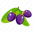 fruit, black cherries, edible, fresh fruit, healthy food, healthy diet icon