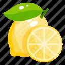 fruit, lemon, edible, fresh fruit, healthy food, healthy diet icon