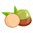 fruit, edible, fresh fruit, feijoa, healthy food, healthy diet icon