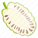 durian, edible, fresh fruit, fruit, healthy diet, healthy food icon