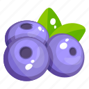 blueberries, edible, fresh fruit, fruit, healthy diet, healthy food icon