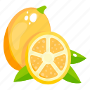 edible, fresh fruit, fruit, healthy diet, healthy food, lime icon