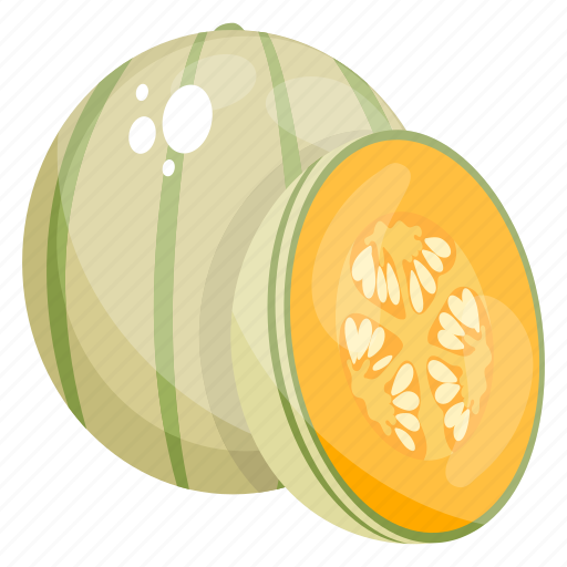Cantaloupe Food Fruit Green Melon Melon Icon Download On Iconfinder There are 476 calories in 1 serving of cantelope green smoothie. iconfinder