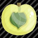 fruit, edible, fresh fruit, amla, healthy food, healthy diet icon