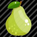 fruit, pyrus, fresh fruit, edible, pear, healthy diet icon