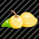 fruit, edible, fresh fruit, cape gooseberry, healthy food, golden berries, healthy diet icon