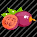 fruit, tamarillo, edible, fresh fruit, healthy food, healthy diet icon