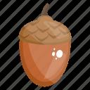 acorn, dry fruit, edible, fruit, healthy diet, healthy food icon