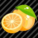 fruit, citrus, food, healthy diet, orange icon