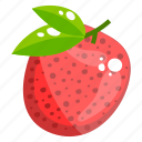 lychee fruit, healthy food, edible, fresh fruit, pulpy fruit, healthy diet icon