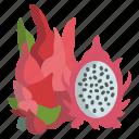 dragon, fruit