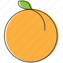 food, fruits, peach icon