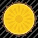 citrus fruit, fruit, healthy fruit, mandarin, vitamin icon