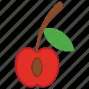 cherry, fruit, juicy fruit, sour cherry, sweet cherry icon
