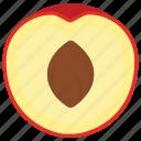drupe fruit, fibre fruit, healthy diet, healthy fruit, peach icon