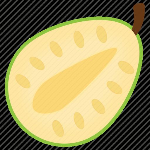 avocado, berry fruit, food, fruit, healthy diet icon
