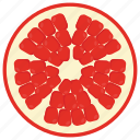 food, fruit, healthy diet, nutritious diet, pomegranate icon