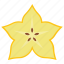 carambola, fibre fruit, food, healthy diet, star fruit icon