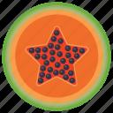 edible, fruit, healthy fruit, papaya, seed fruit icon