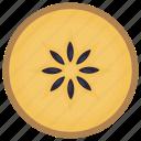 fruit, healthy food, nutritious food, sapodilla, sweet food icon