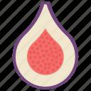 drupe fruit, food, fruit, healthy fruit, plum icon