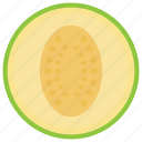 cantaloupe, food, fruit, healthy diet, melon icon