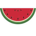 berry, watermelon icon