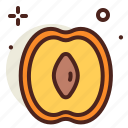 apricot, food, fresh, healthy, juice icon