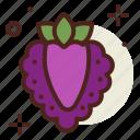 boysenberry, food, fresh, healthy, juice, raspberry icon