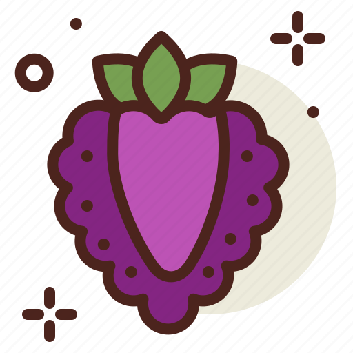 boysenberry, food, fresh, healthy, juice, raspberry icon
